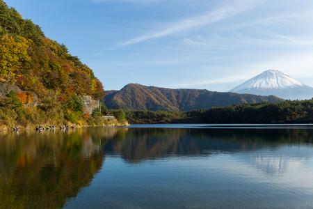 saiko: Mountain Fuji and Saiko Lake in Autumn