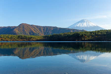 Saiko Lake and mount Fuji Stock Photo