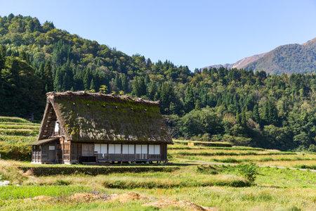 Historical Japanese Village Editorial