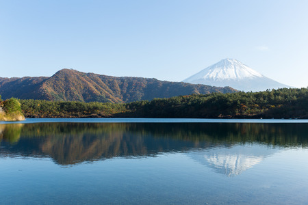 Lake saiko with Fuji Mountain Stock Photo