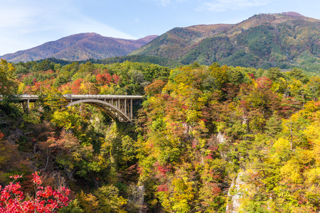 Bridge passing though Naruko Gorge in autumn