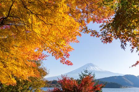 Mt. Fuji in autumn season Stock Photo