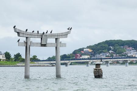 torri: Stone torii in Fukuoka city