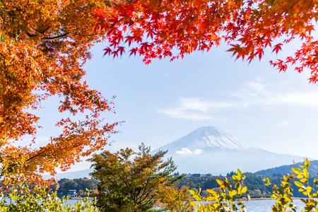 Fuji and Kawaguchiko