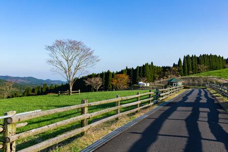 Beautiful landscape and farm Stock Photo