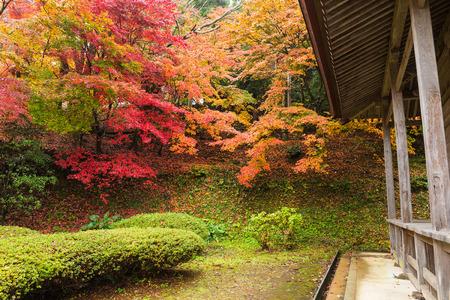 Japanese tea house in Autumn Stock Photo
