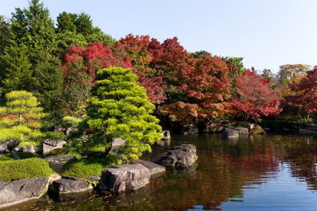 momiji: Japanese garden with autumn scene
