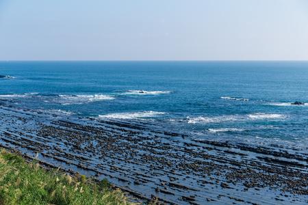 Aoshima Island coast Stock Photo