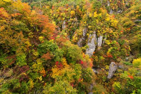 Naruko canyon with autumn foliage in Japan