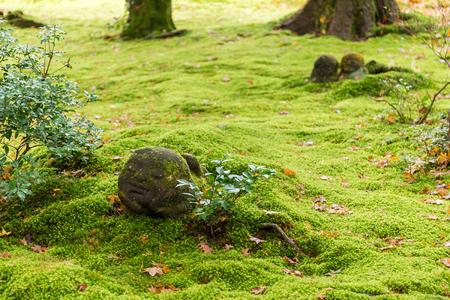 Garden of sanzenin