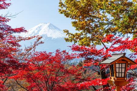 sengen: Maple tree, japanese temple and mountain Fuji