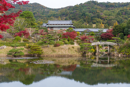 Japanese beautiful garden in autumn