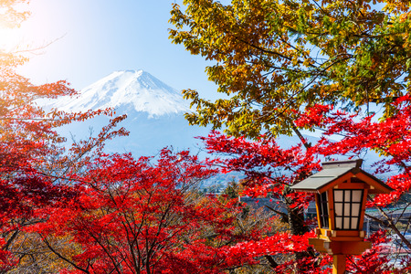 sengen: Mount Fuji and maple tree