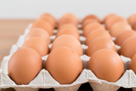 Chicken Egg in pack
