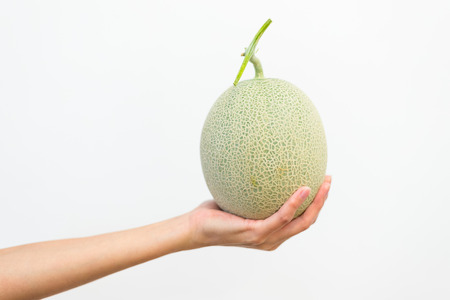 Hand holding melon