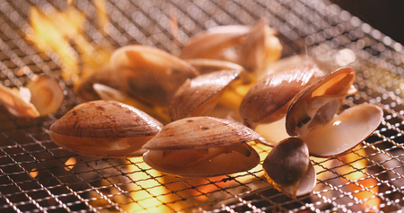 Fresh clam on barbecue grilled metal net  Stock Photo