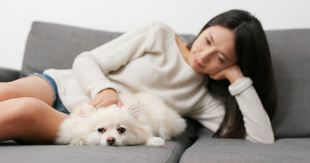 Woman massaging on her dog at home
