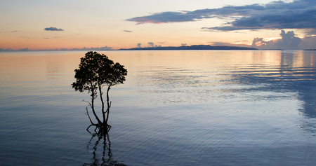 Sea and sky under sunset at ishigaki island 版權商用圖片