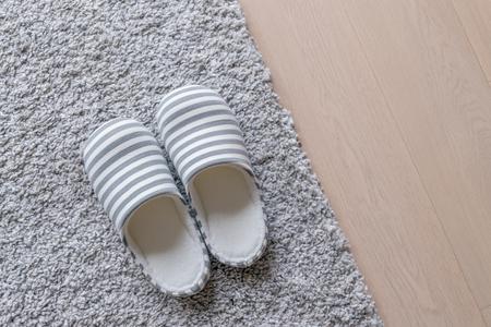 Slipper on Grey carpet on floor