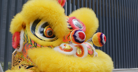 Yellow Chinese lion dance for lunar new year