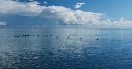 Ishigaki island seascape