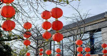 Red lantern for lunar new year