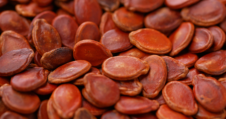 Red dry watermelon seed