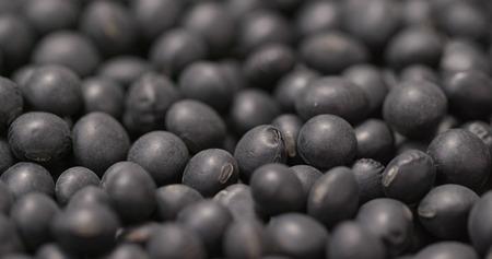 Black soy bean
