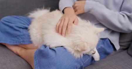 Woman cuddling her pomeranian dog