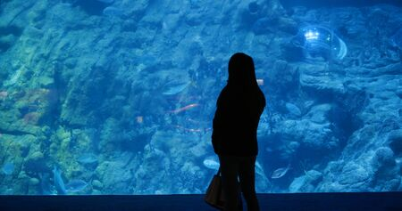 Woman in the aquarium, and look at the fish inside 免版税图像