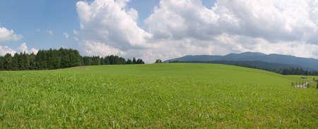 Alpine, summer panoramic landscape Stock Photo