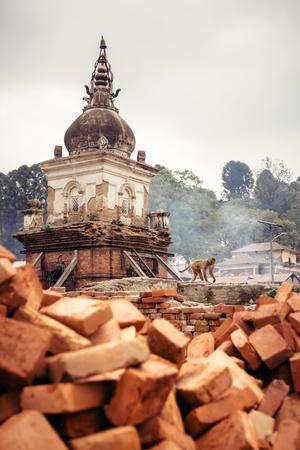 A monkey walks past one of the many chaityas and rising smoke from the burning funeral pyers at Pashupatinath temple. Kathmandu, Nepal. Stock Photo