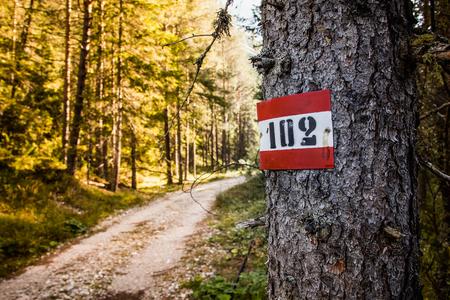 clavados: Marcador de ruta 102 en los Dolomitas italianos cerca del parque Drei Zinnen. Foto de archivo