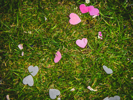 Heart confetti scattered onto green grass at a wedding reception.