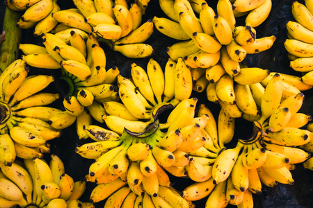 Bunches of sweet bananas sold in a market in Tangalle, Sri Lanka Stock Photo
