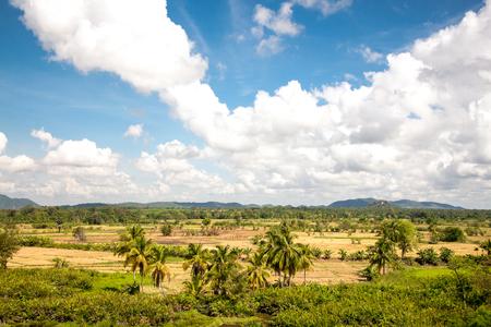 Beautiful green fertile tropical landscape with blue skies and good weather. View from Sigiriya, Sri Lanka.