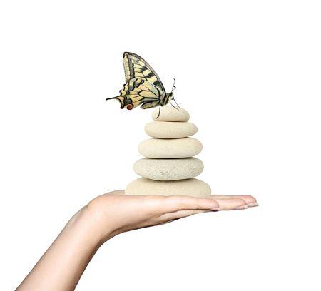 femme papillon: Main tenant des roches et un papillon.  Banque d'images