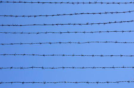 correctional facility: Razor wire