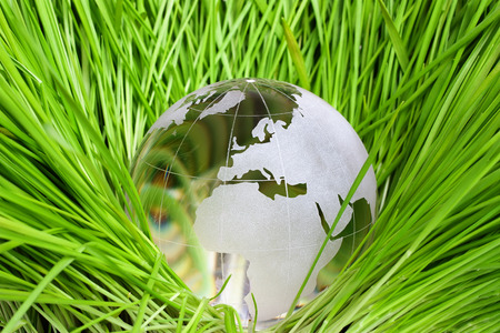 glass background: Earth in green grass