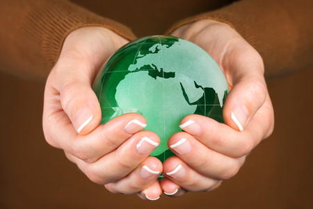 land plant: Environmental protection concept with green glass globe in hand