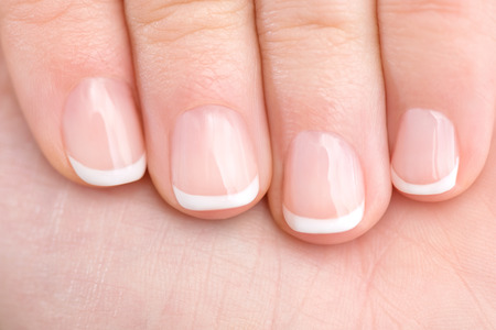 manicure woman: Naturally French Manicured Fingernails healthy hand