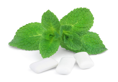 villi: This is a sprig of mint and three pads of chewing gum isolated on white background. Stock Photo
