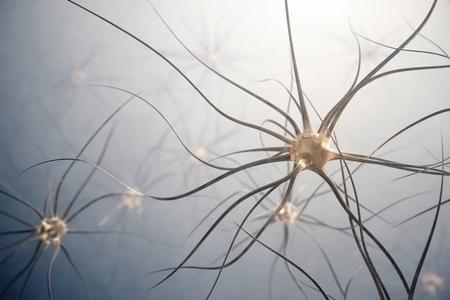Human nerve cells. 3d illustration