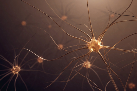 Human nerve cells. 3d illustration