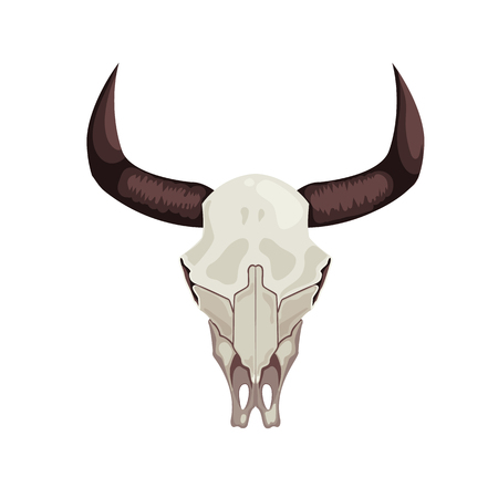 Naturalistic cow skull bones with horns. Western decoration isolated vector illustration