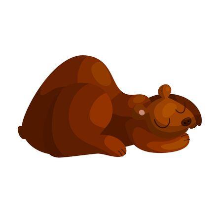 Cute sleeping bear cartoon vector illustration. Wild baby animal asleep. Sleepy teddy drawing