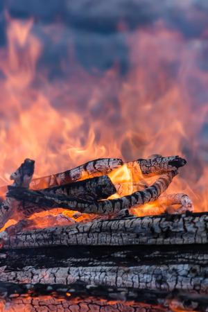 warming: Warming fire