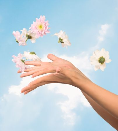 women hands with flying flowers against sky photo