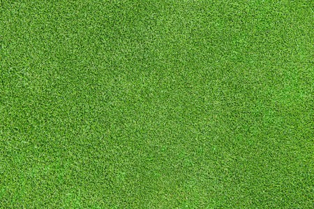 lawn: beautiful green grass texture from golf course