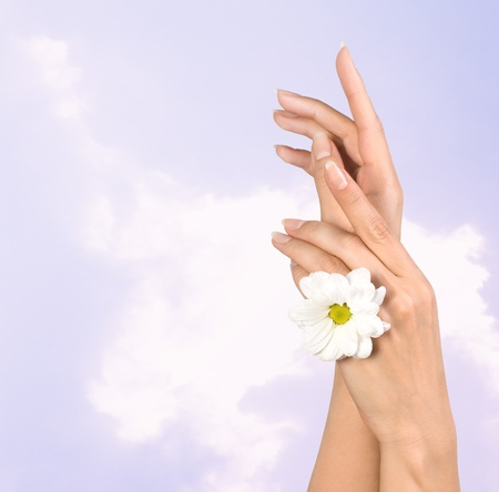 image of beautiful female hands with flower Stock Photo - 8485805